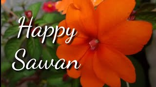 Happy Sawan