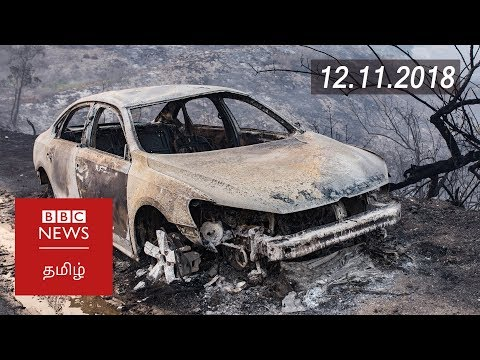 California wildfires reach grim milestone | BBC Tamil Latest News | பிபிசி தமிழ் செய்தியறிக்கை |