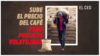 Sube el precio del café pero persiste volatilidad