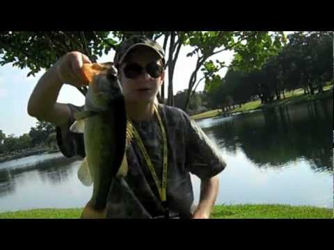 Pond Bass Fishing with Artificial Lures