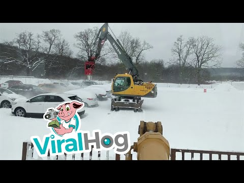Cleaning Snow Off Cars for Auction
