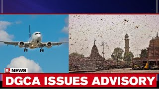 DGCA Issues Advisory For Domestic Flights To Tackle Locust Swarm Threat