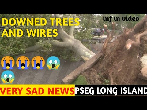 PSEG REPORT PSEG: Downed trees, wires from Isaias have impacted 430,000 customers