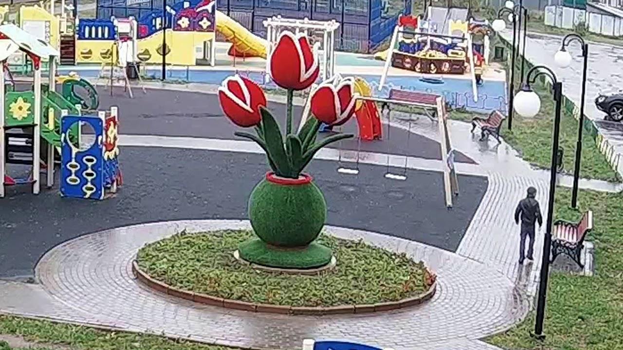 Юный пироман сжег скульптуру цветка в Томилино