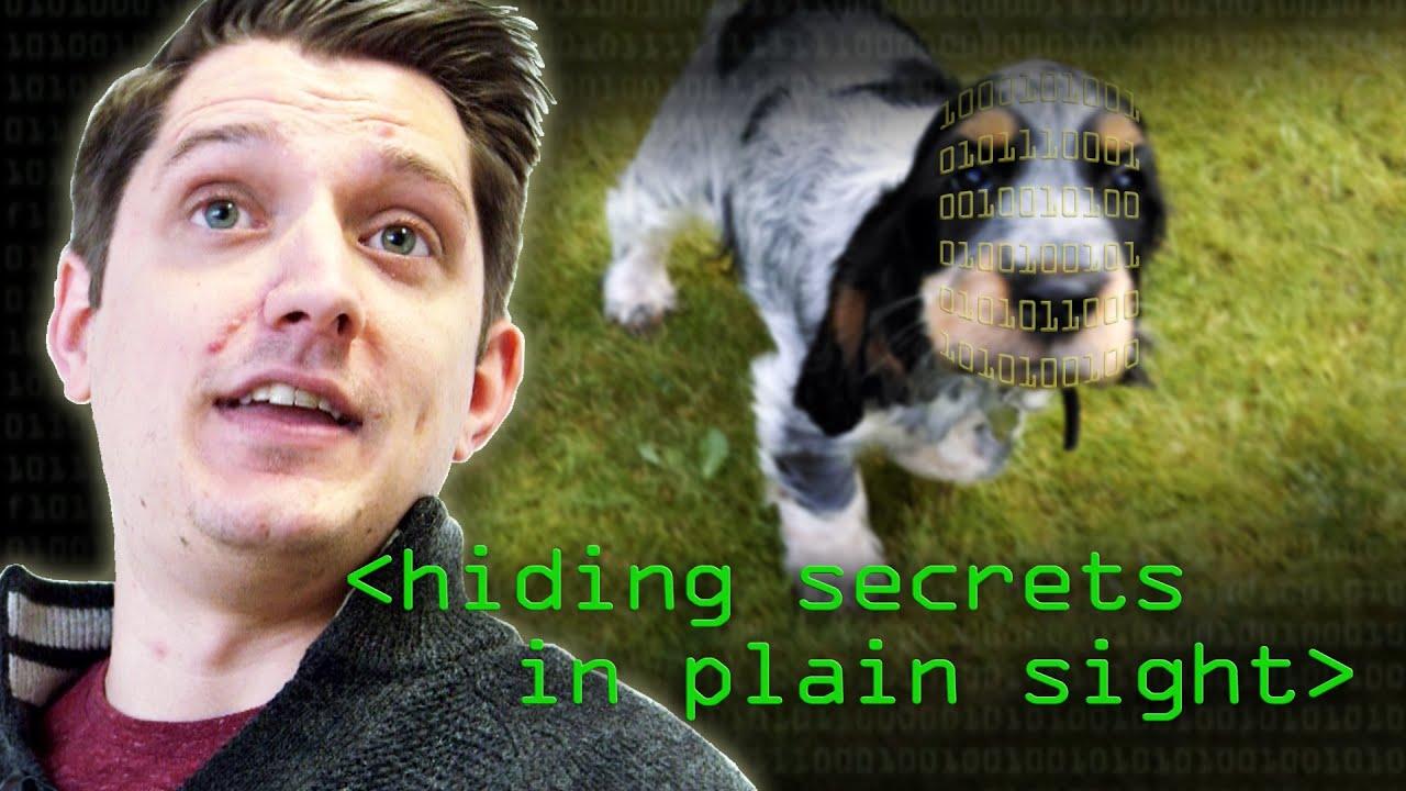 The Science Of Hiding Secret Messages Inside Regular Images