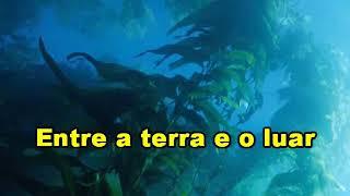 Karaokê Moraes Moreira Páo E Poesia