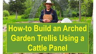 Tips and Ideas on How-to Build an Arched Garden Trellis Using a Cattle Panel