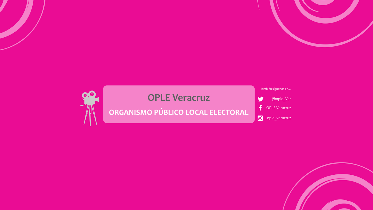 Sesión Ordinaria del Consejo General del OPLEV 29 de Agosto