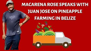 preview picture of video 'Farming in Belize- Macarena Rose speaks with Mr. Juan'