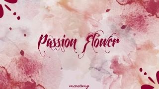 Mamamoo (마마무) - Passion Flower (정열의 꽃) — [Color Coded in Han/Rom/Eng Lyrics]