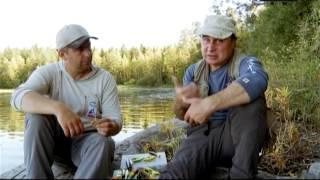 Рыбалка в октябре средняя полоса россии
