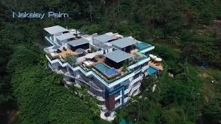 Video of Nakalay Palm