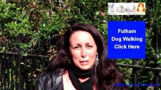 preview picture of video 'Pet Sitter Fulham - Also Cat Sitting and Dog Walking in Kensington and Parsons Green'