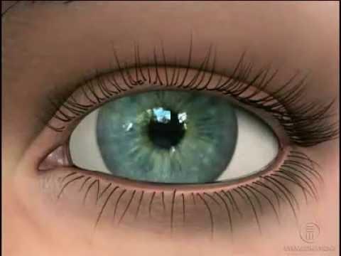 Контактные линзы для восстановления зрения
