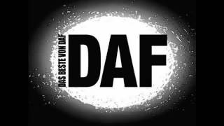 DAF - Der Mussolini