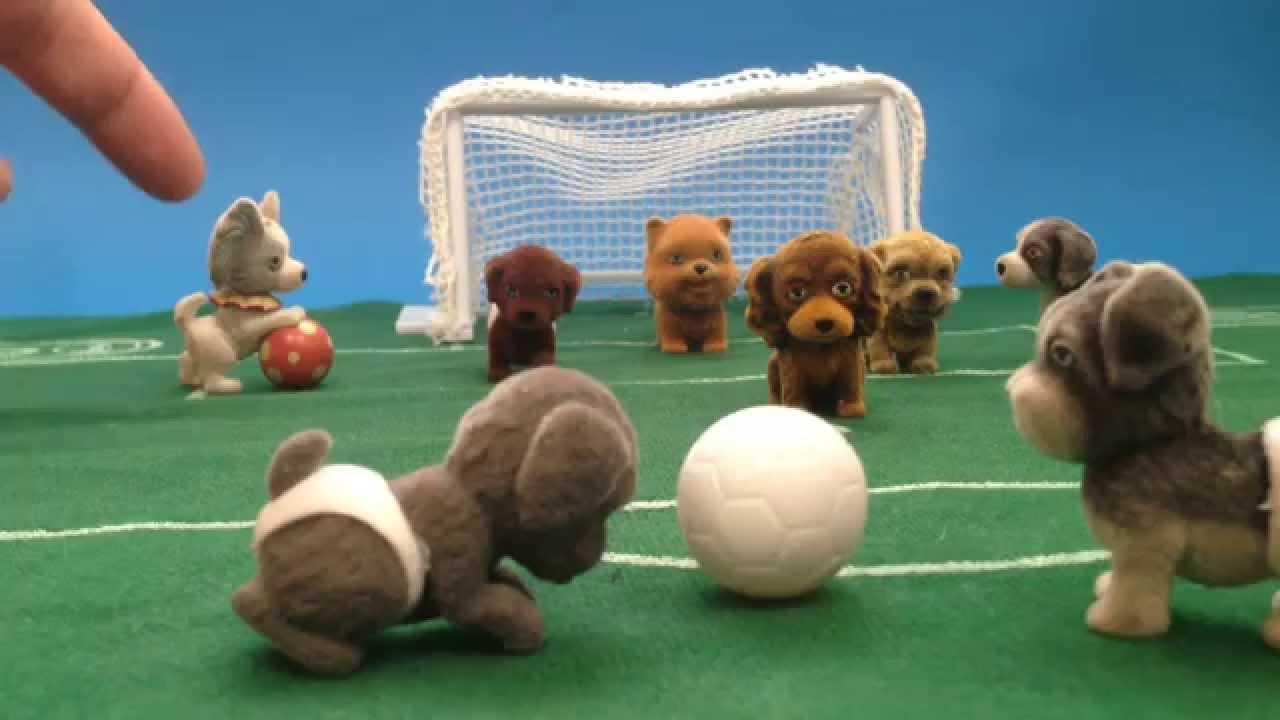 Fútbol de perros. Perros futboleros.