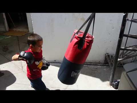 Box, niño de dos años entrenando Box
