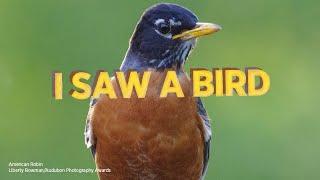 I Saw A Bird with Audubon: Episode 13
