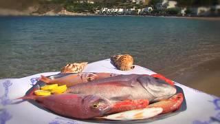 MAGOS Seaside Restaurant | Kapsali  Kythera