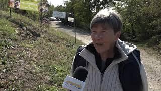 Szentendre MA / TV Szentendre / 2019.10.10.