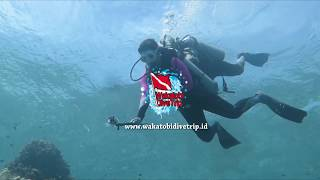 preview picture of video 'Wakatobi Dive Trip I Discovery Dive 2'