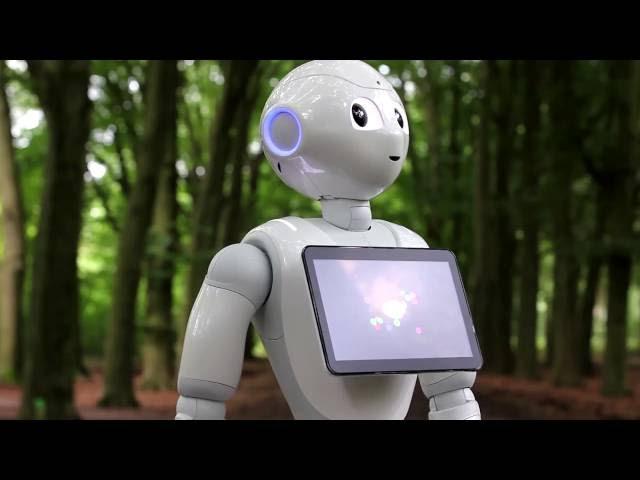 Software ontwikkelen voor Robot Pepper
