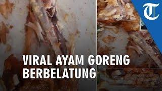 Viral Video Ayam Goreng Berbelatung, Sadar ketika Dimakan ada yang Bergerak
