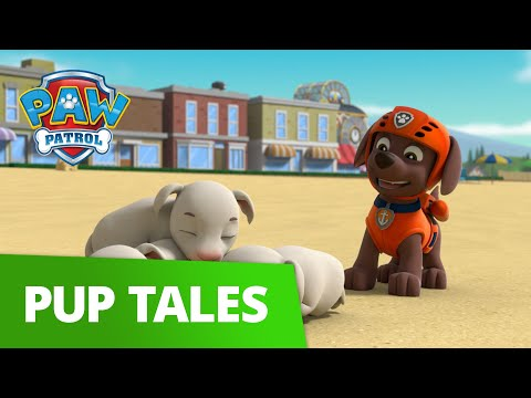 Download Paw Patrol Live Paw Patrol Episodes Cartoons Toy Episod