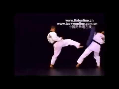 How to do a Pushing Kick (Miro Chagi)
