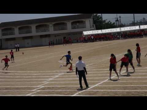 2017年 雲雀丘学園中学校 体育大会 クラス対抗リレー 2年生