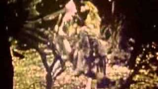 Wizard of Oz - Jitterbug.flv