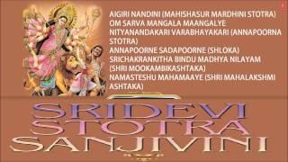 Sridevi Stotra Sanjivini Sri Adi Shankaracharya Devi Bhajan