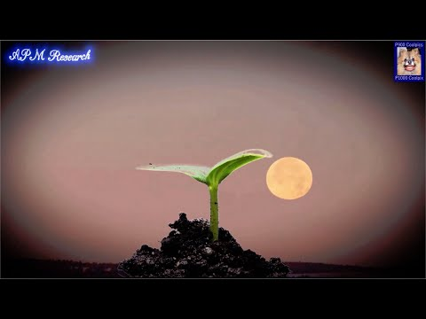, title : 'Planting Seeds By The Moon Phases And Zodiac