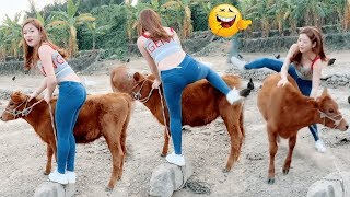 Funny Videos 2019 - People doing stupid things Part 12