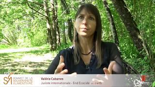 Les extraits du Sommet #011 – Valérie Cabanes