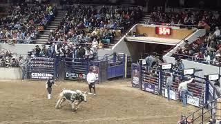 Western Stock Show, Denver Co 1 11 2020