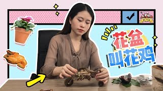 E15 Roasting Chicken in Flowerpot? More delicious than you ever thought | Cooking in office - dooclip.me