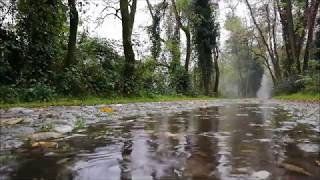The soothing sound of falling rain 432hz 1 hour /deszcz/regen/дождь