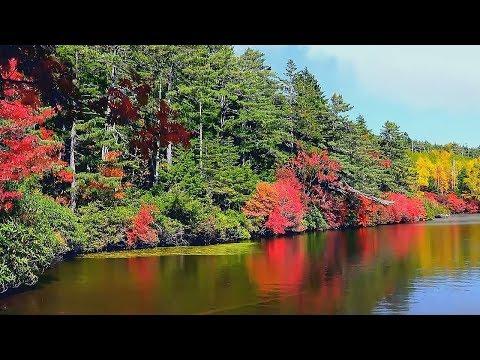 Красивая Атмосферная Инструментальная Музыка для души! Красивое видео/Beautiful instrumental music видео