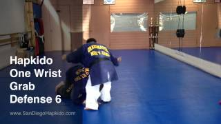 Hapkido One Wrist Grab Defense 6