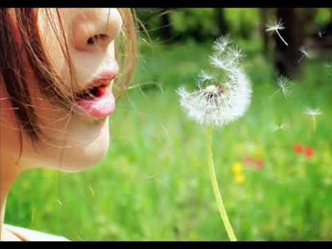 Марина девятова минус песни я желаю вам счастья и добра
