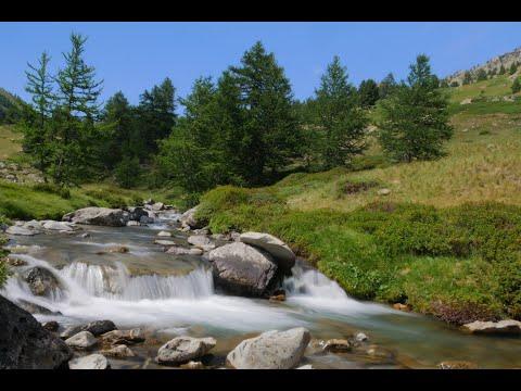 Découverte des Haultes Alpes (Fly fishing in Hautes Alpes)