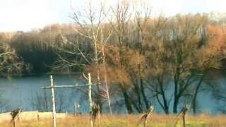 Соколиный хутор. Этнографический зеленый туризм