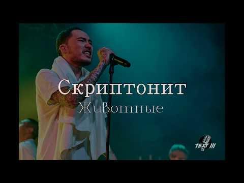 СКРИПТОНИТ -  Животные (Текст песни)
