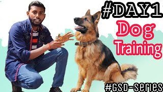 Dog Training - Day 1 || How to Start Basic Training from the 1st Day 4K  HINDI #GSD