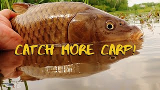 Tips For Catching Carp On The Fly - Carp Fly Fishing For Beginners - The Fly Guy