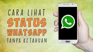Cara Melihat Status Whatsapp Teman Tanpa Ketahuan Pemiliknya