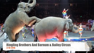 Ringling Bros. And Barnum & Bailey Circus   With Elephants