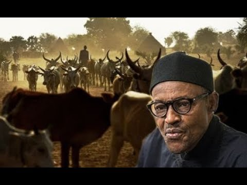 Why we are setting up RUGA SETTLEMENT across Nigeria – Presidency