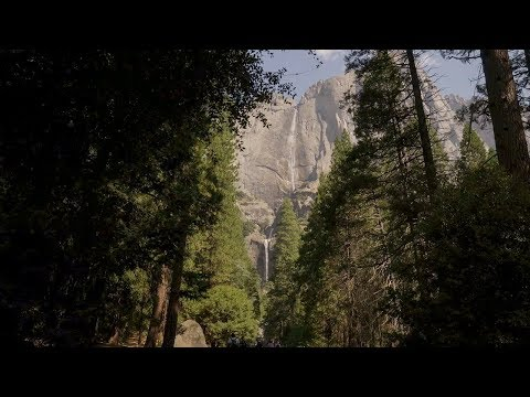 California 101: Yosemite National Park